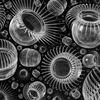Polypen II - polypen, cnidaria, nesseltiere, tiere, fauna, wasser, submarin, biologie, zoologie, organismen, wesen, schwarm, kugelförmig, sphärisch, globulär, mund, öffnung, mantel, transparent, tentakeln, stacheln, kugelig, schweben, dunkelheit, kunstzeit, robolotion