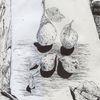 Stillleben, Hand, Birne, Kugelschreiber