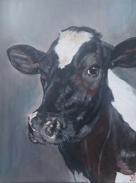 Kuh, Holsteiner, Milchkuh, Malerei