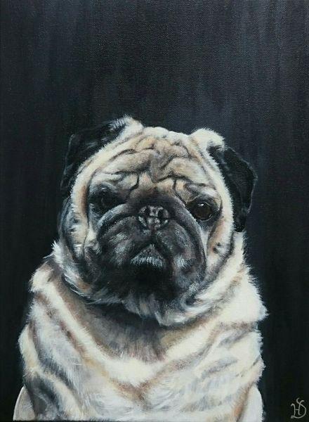 Portrait, Gizmo, Hund, Mops, Malerei
