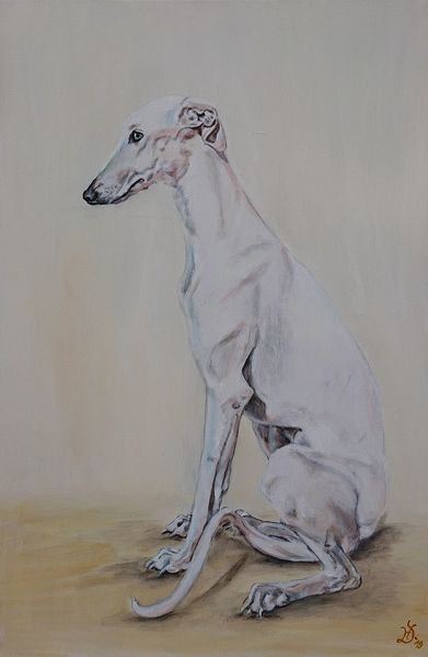 Whippet, Hund, Greyhound, Windhund, Galgo, Malerei