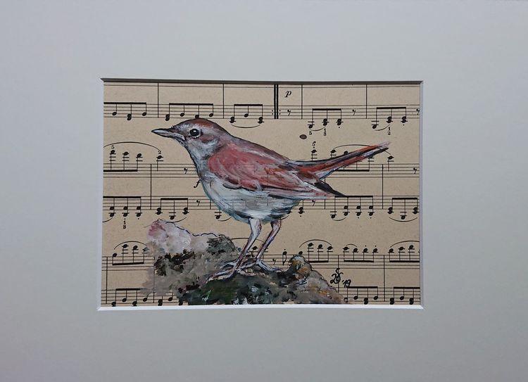 Nachtigall, Singvogel, Vogel, Malerei