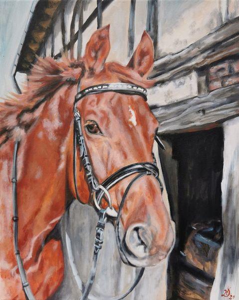 Fachwerk, Pferde, Fuchs, Malerei