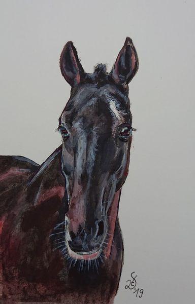 Pony, Pferde, Polopony, Feolito, Aquarell