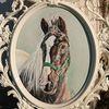 Pferdekopf, Pony, Portrait, Aurora