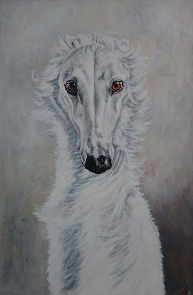 Windhund, Weiß, Hund, Augen, Barsoi, Malerei