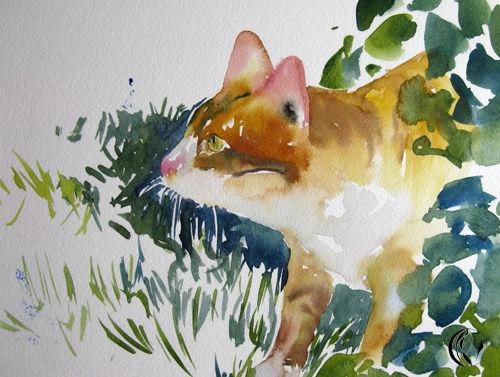 Wasser, Rot, Malen, Aquarellmalerei, Tiere, Katze