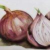 Gemüse, Zwiebeln, Stillleben, Aquarellmalerei