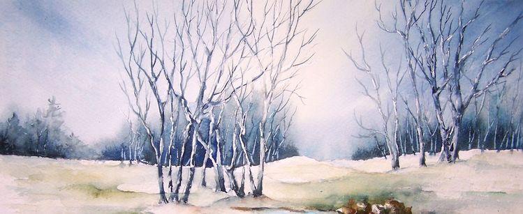 Schnee, Baum, Rauhreif, Kalt, Aquarell, Frost