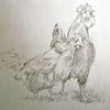 Gockel, Landwirtschaft, Tiere, Skizze