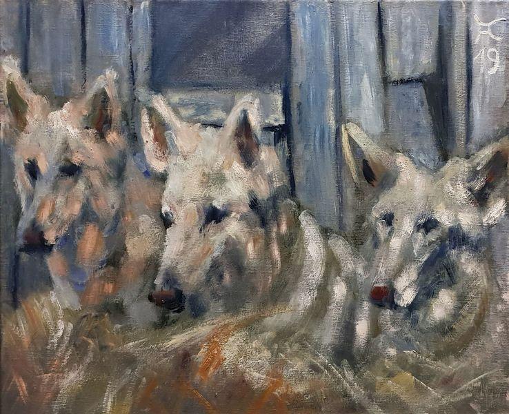 Holz, Schäferhund, Weiß, Malerei,