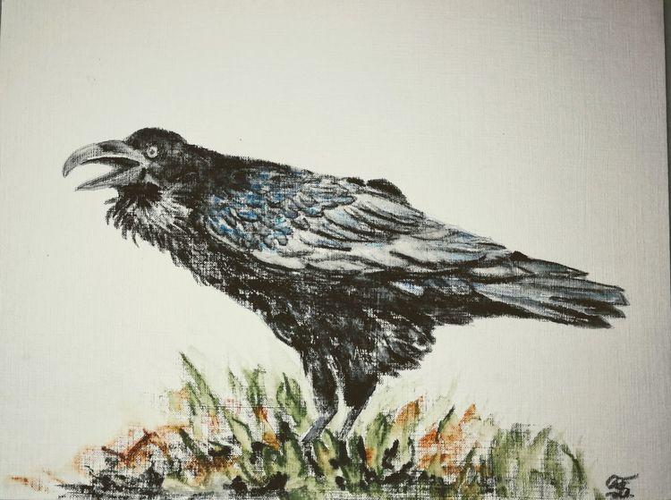 Rabe, Pastellmalerei, Vogel, Krähe, Zeichnungen,