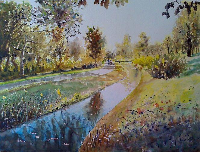 Spiridonweg, Natur, Bach, Gewässer, Goldbach, Wasserspiegelung