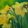 Osterglocken, Pflanzen, Blumen, Natur