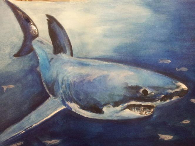 Wasser, Blau, Weißer hai, Fische, Aquarellmalerei, Meer