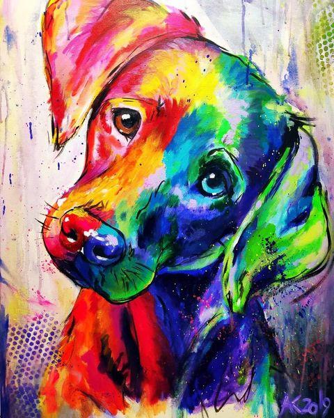 Regenbogen, Expresiv, Hund, Freund, Liebe, Bunt