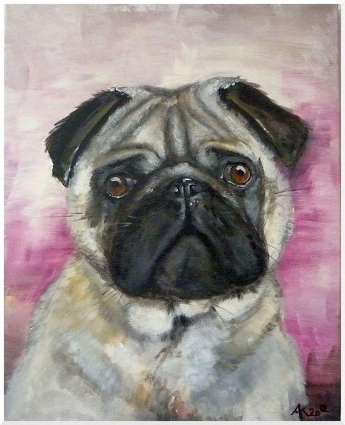 Gesicht, Mops, Hund, Tiere, Malerei