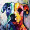 Bunt, Lila, Hund, Regenbogen