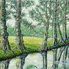 Fluss, Baumallee im sommer, Spiegelung i, Baum