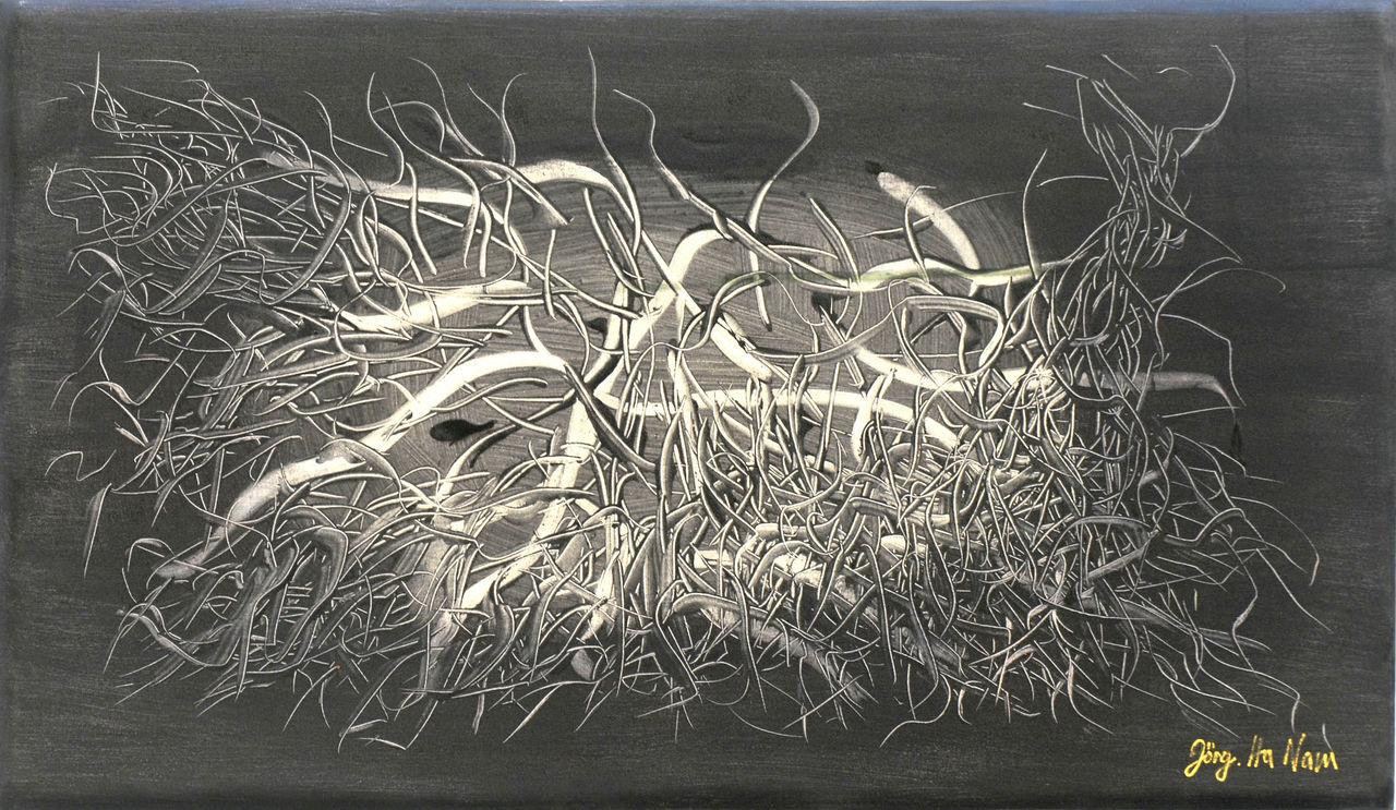 Serie Naturliche Netzwerke 1 Realismus Abstrakt Zeitgenossische Kunst Schwarz Weiss Von Hans Jorg Hamann Bei Kunstnet