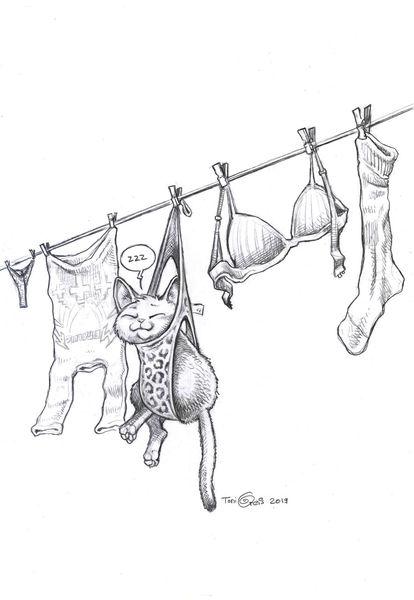 Katze, Schlaf, Wäsche, Wäscheleine, Zeichnungen