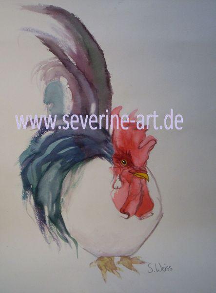 Weiß, Tiere, Aquarellmalerei, Hahn, Vogel, Natur