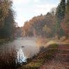 Herbst, Nebel, Landschaft, Impressionismus