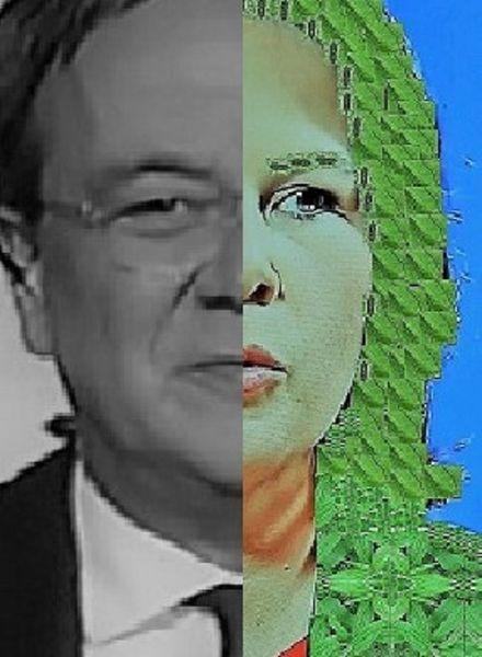 Mann, Kopf, Frau, Politische farbenlehre, Synthese, Umfrage