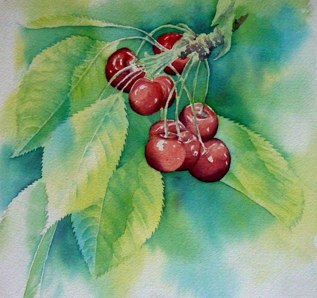 Sommer, Aquarellmalerei, Äste, Kirsche, Obst, Rot
