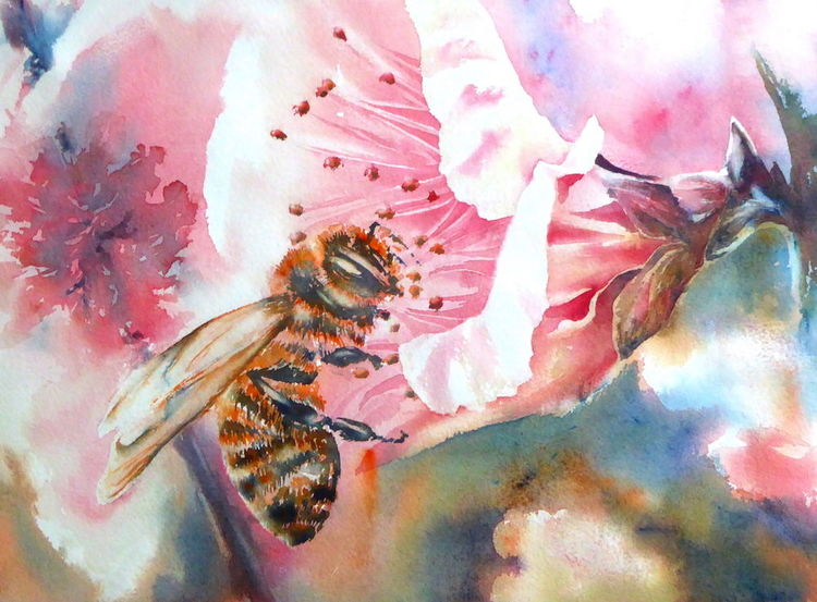 Biene, Blüte, Honig, Nektar, Aquarellmalerei, Aquarell