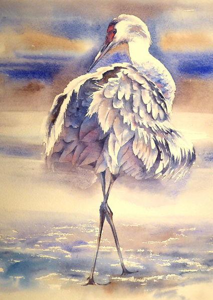 Aquarellmalerei, Vogel, Kran, Kranich, Aquarell, Tiere