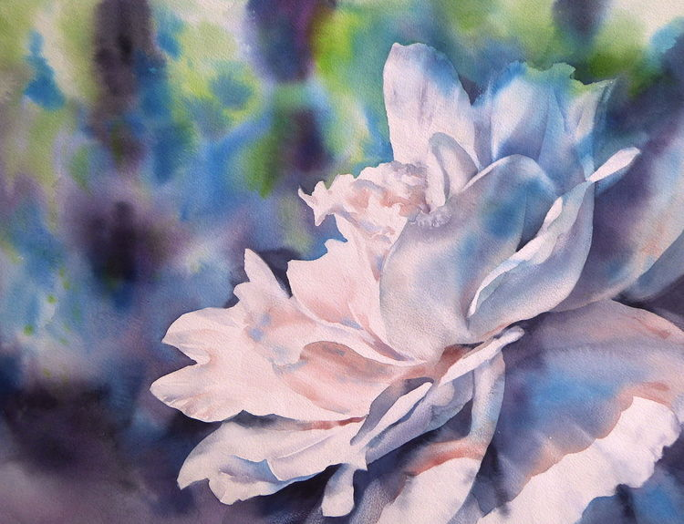 Rose, New dawn, Aquarellmalerei, Weiß, Aquarell