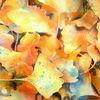 Laub, Ginkgo, Herbst, Blätter