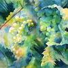 Weintrauben, Trauben, Aquarellmalerei, Rebe