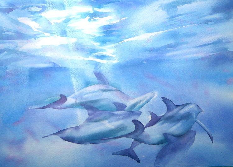 Wasser, Licht, Aquarellmalerei, Delfin, Aquarell, Wasserspiele