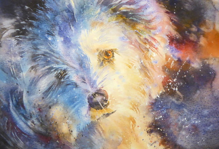 Aquarellmalerei, Wollknäuel, Hund, Hundeaugen, Aquarell, Tiere