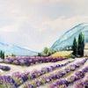 Kloster, Lavendel, Provence, Frankreich