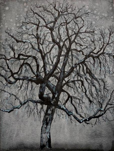 Baum, Winter, Kastanien, Zeichnungen