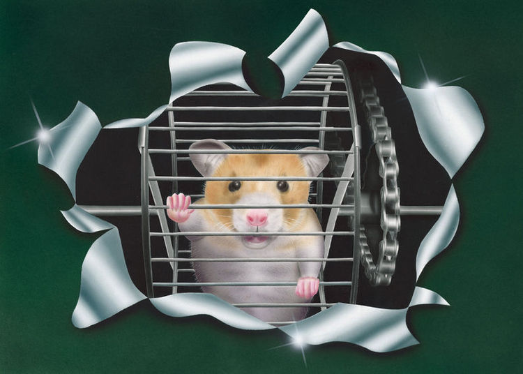 Acrylfarben, Fell, Tiere, Hamster, Illustrationen