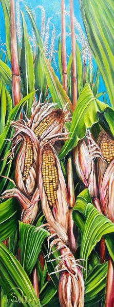 Sommer, Maiskolben, Ernte, Feld, Erntezeit, Mais