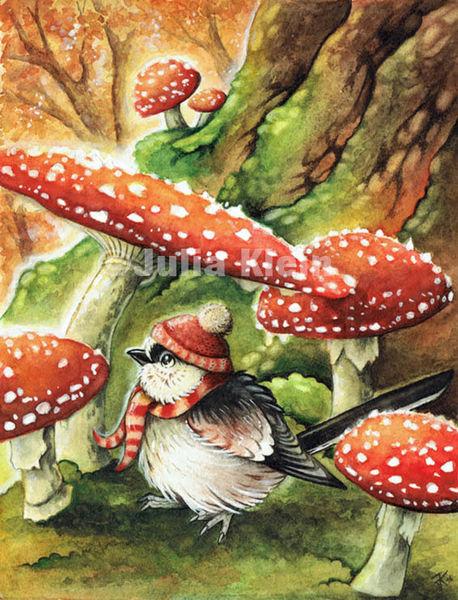 Fliegenpilze, Kinderbuch, Pilze, Semirealistisch, Vogel, Fantasie