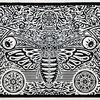 Schmetterling, Druckgrafik
