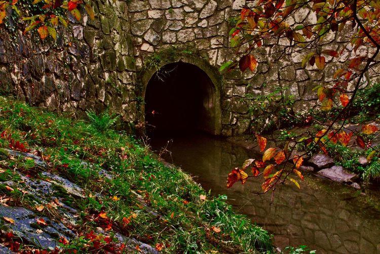 Wasser, Realismus, Fotografie, Landschaft, Kanal