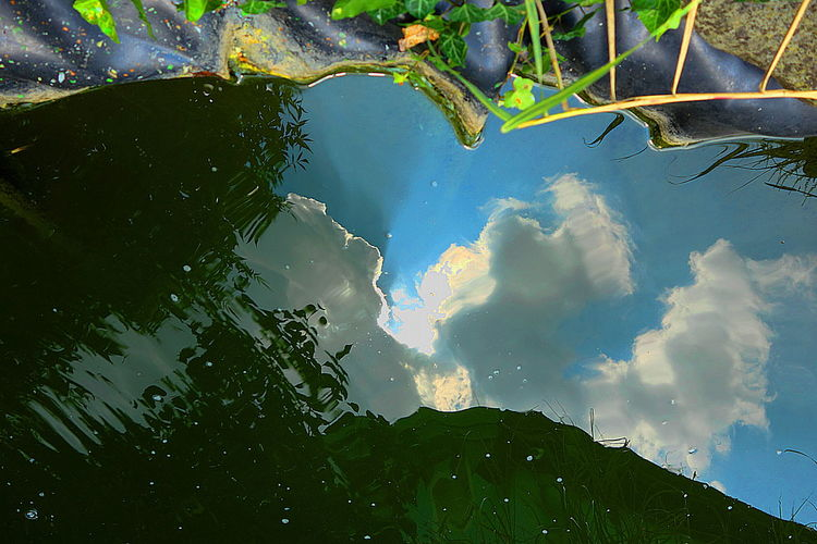 Digitale kunst, Fotografie, Landschaft, Hyperrealismus, Glas