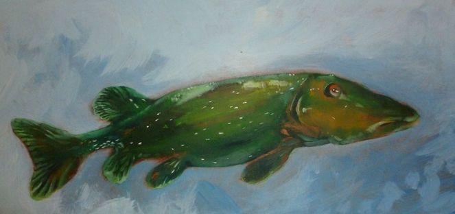 Wasser, See, Hecht, Fisch, Malerei, Tiere