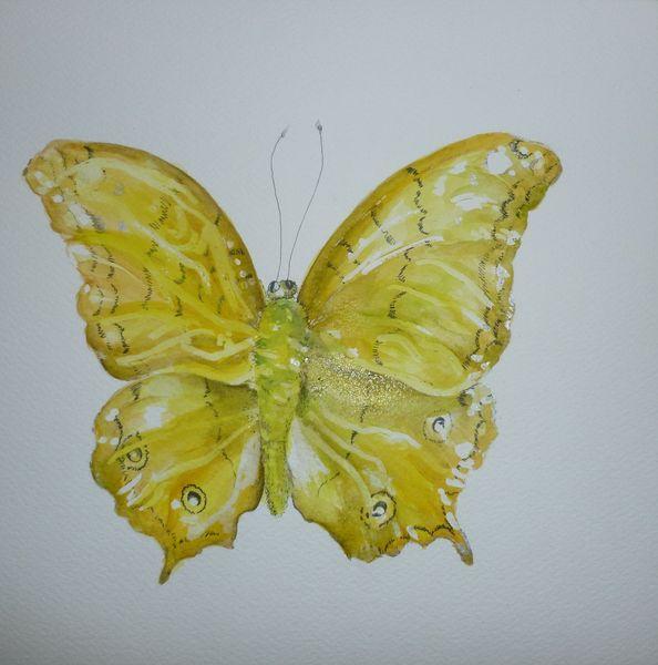 Grün, Schmetterling, Insekten, Gelb, Aquarell