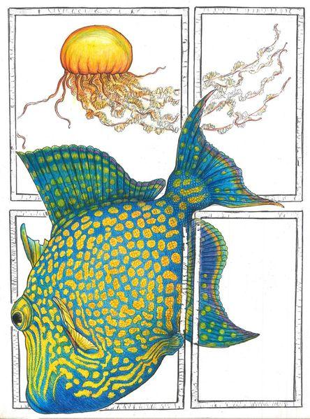 Gelb, Qualle, Fisch, Meerestiere, Blau, Zeichnungen