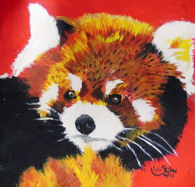 Wildtiere, Baby, Kinder, Roter panda, Possierlich, Sommer