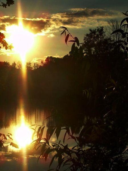 Spiegelung, Abend, Sonnenuntergang, Schwarz, Wasser, Fotografie