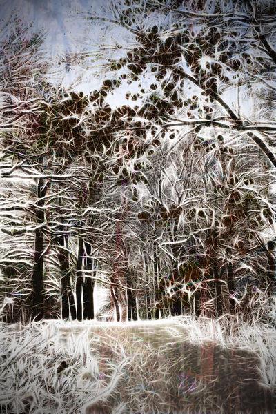 Wintertraum, Digitale kunst